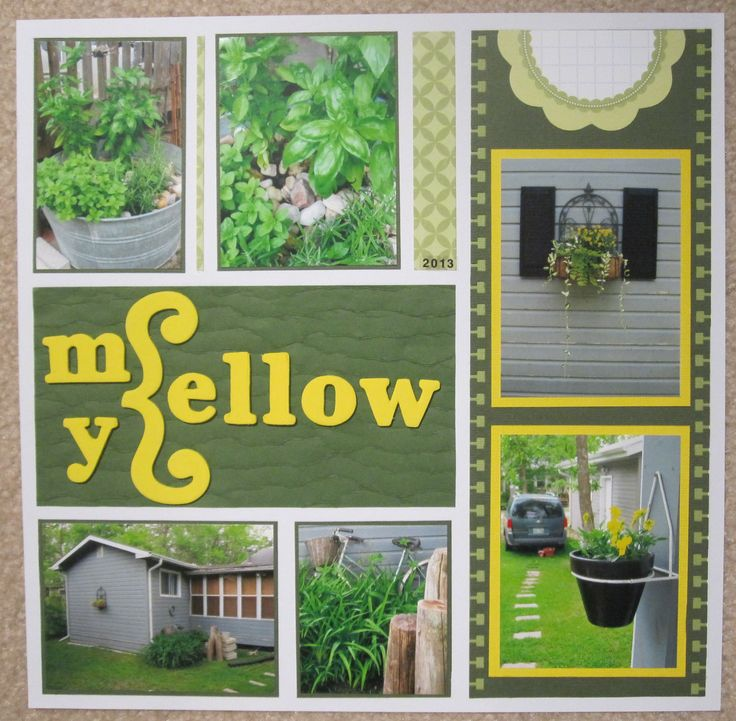 Mellow Yellow, at the cottage, 2013