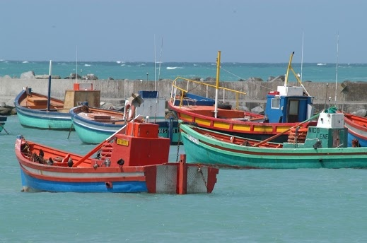 Colourful Fishing Boats, Cape Town.