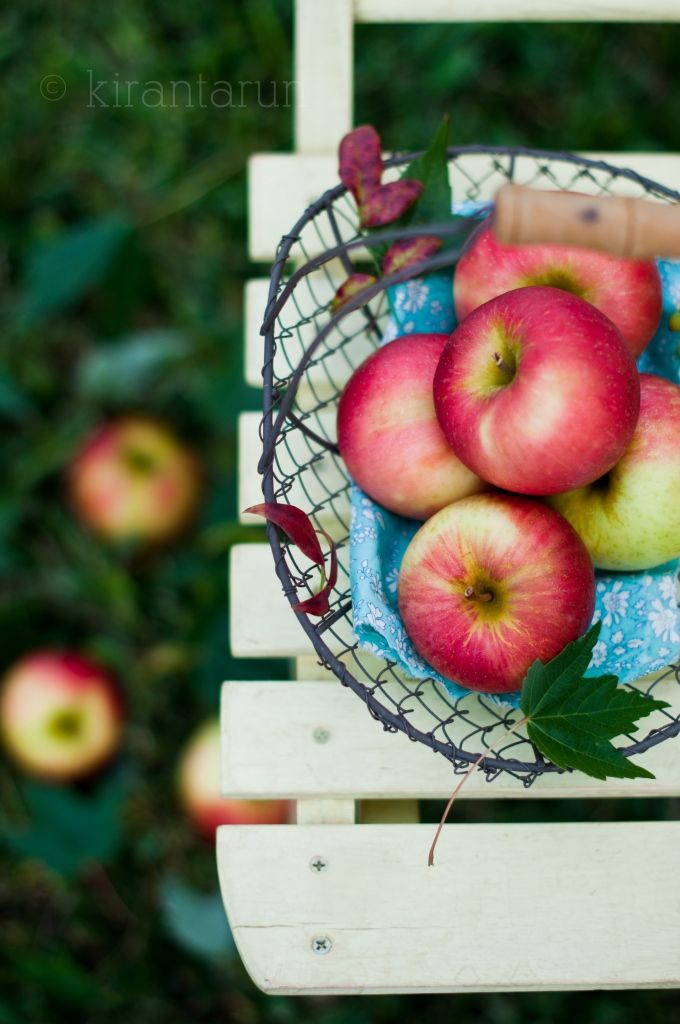 Beautiful Apples! Autumn Apple Cider & Champagne Sangria
