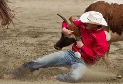 1000 Images About Rodeo On Pinterest The Bull Chris D
