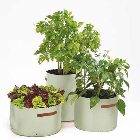 17 best images about perfect patio garden equipment on for Vegetable garden planters
