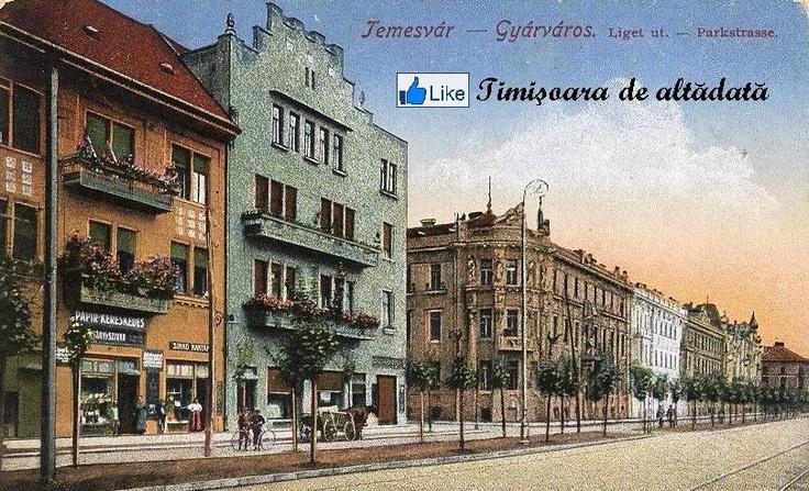Timisoara - 1910 - Fabric
