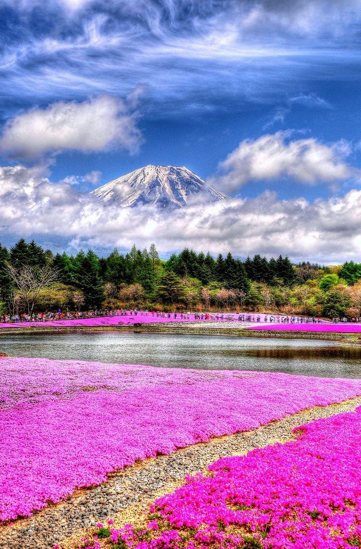 Honshu - Japan