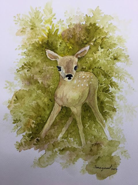 Watercolor Fawn