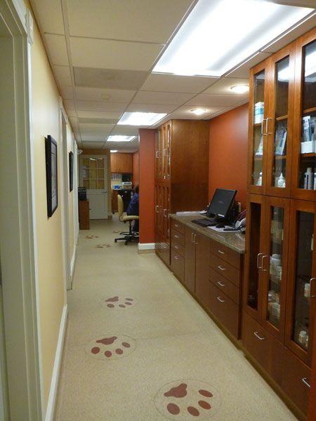 Making veterinary practice home - Hospital Design