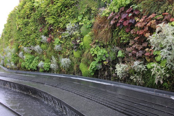 Biophilic Landscaping Course!