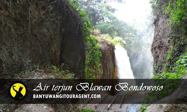 Air Terjun Blawan Bondowoso terletak di desa Kalianyar Kecamatan Sempol Kabupaten Bondowoso. Info selengkapnya simak disini...
