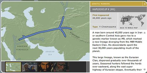 Haplogroup K M9