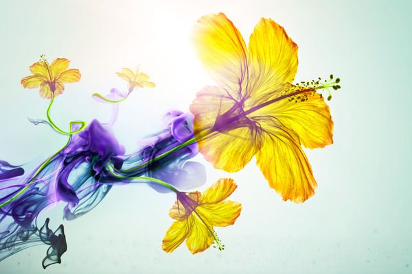 Charles Voegele Spring Campaign 2011 by Viaframe , via Behance
