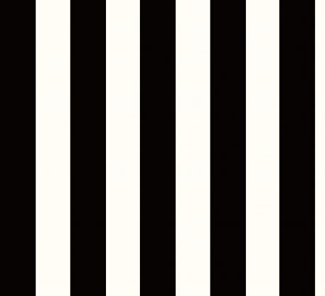 PASKI (czarno-białe) - Tapeta