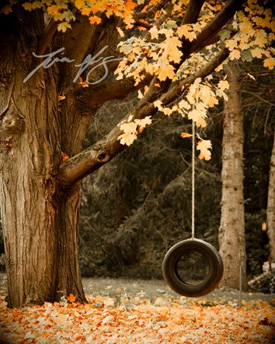 Childhood Memories. Tire Swings. Crunchy Leaves. Fresh Fall Air.