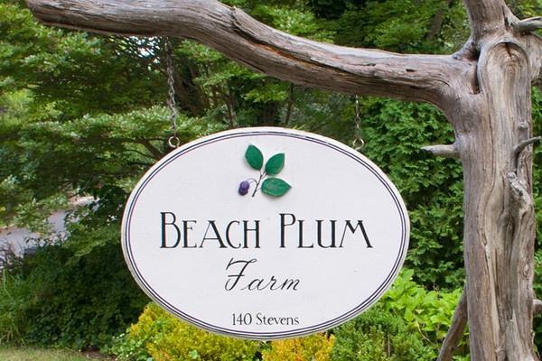 Beach Plum Farm, Cape May, NJ