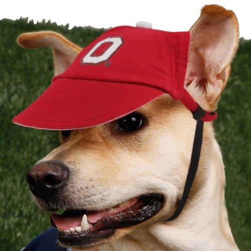 13 Best Dog Toys Amp Pet Gadgets Images On Pinterest Dog