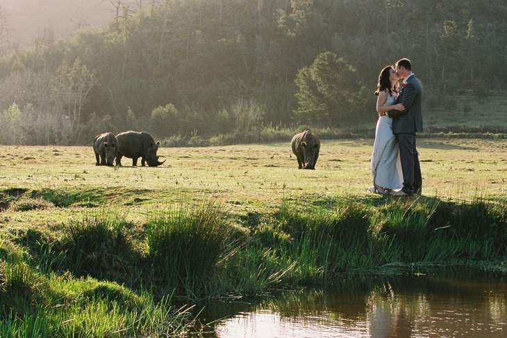 This will be you soon, Lis! @Lisa-Marie Stokes--Botlierskop Game Reserve venue.