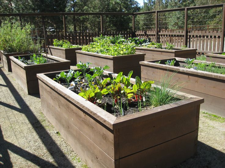 Captivating Raised Garden Bed Ideas | Shambhala Pottery: Where The Day Went