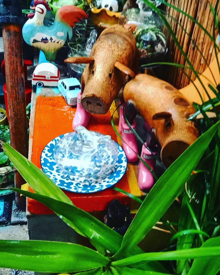 instagardens gardenart smallgardens