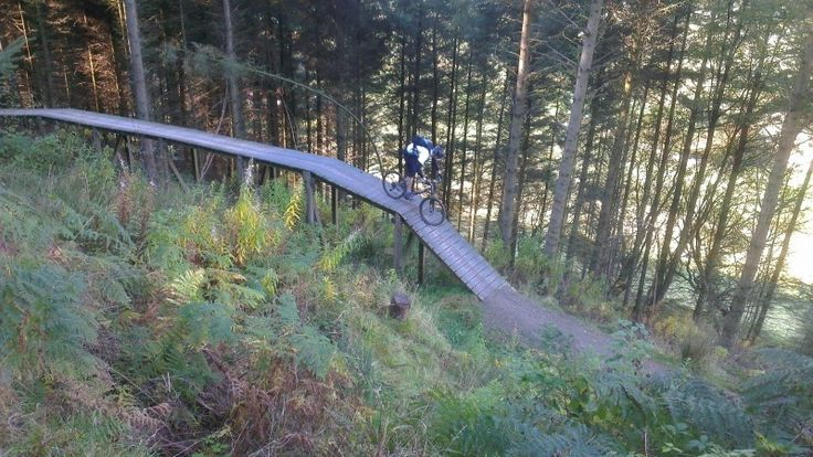 Coed Llandegla, North Wales - A stunning private wood with many fine trails that include a teasing 12-km beginners' ride. After a gentle uphill section comes the joy of downhill, with taster-jumps offering spice. #mtb #ukmtbtrails