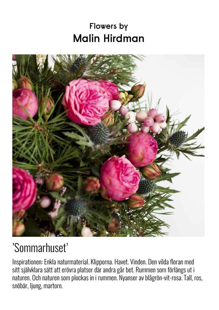 ARKITEKTUR & NATUR - www.hirdmancarlsson.se