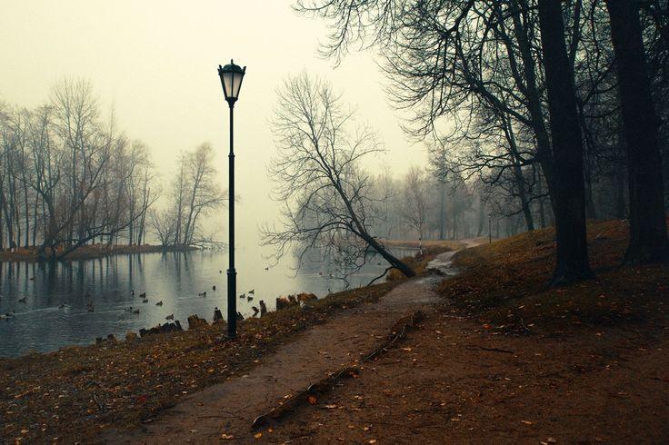 Gatchina. Park.