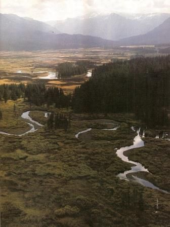 1000 Images About Rocky Mountains Wyoming On Pinterest