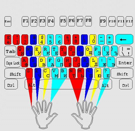 Расположение рук на клавиатуре при слепой печати