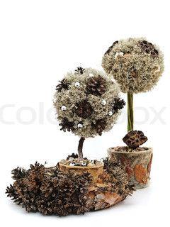 Billede af 'Håndlavet dekoration træ fra fyrretræ og kogler mod den hvide baggrund'