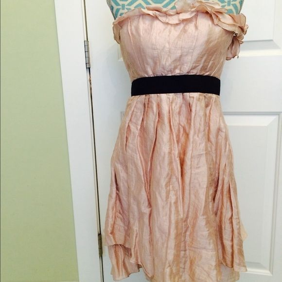 LaRok dress. La Rok beautiful short party dress. Pale pink color with ruffled design on top. Retail is $240. I paid $120 at TJMaxx. This is new with tags size L. Black band has stretch to it. Gorgeous! LaRok Dresses