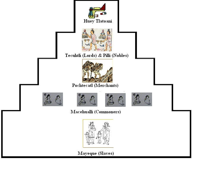 What are some ways the Maya and the Aztecs differ politically?
