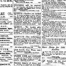 Ads: Griffith living there, and fresh fish and oysters available at the Boarding House. Gippsland Guardian, 7 Mar 1862, p. 1, 'Advertising'.