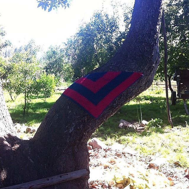 #tejeresmisuperpoder #tejer #crochet #crocheting #crochetlove #crochetaddict #crochetlife #lana#puntilla #amotejer #naturaleza #lanadealpaca