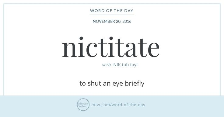 Word of the Day: Nictitate | Merriam-Webster