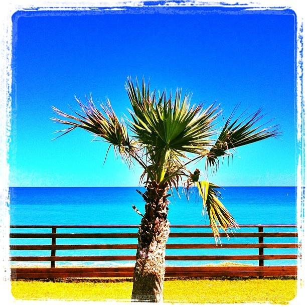 Porto Potenza Picena - After jogging • #beach #sea #sky #flower #igmarche #igersmarche #igersitalia #instapic #instacool #instamood #instagroove #iphoneonly #portopotenzapicena - @Stefano Cogoni- #webstagram