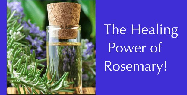 SHARING IS CARING!2.6k2900Why Is Rosemary One Of The Most Powerful Herbs On Earth? Rosemary equals Goji Berries in anti-oxidant strength, fighting free radicals and damaging oxidation that contribute to inflammation and aging. Carnosol is the magic free radical fighting ingredient in rosemary which is also why rosemary oil is such a powerful anti-inflammatory herb and …