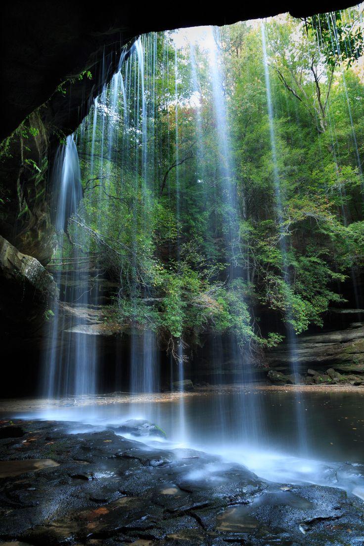 50 best Sweet Home Alabama images on