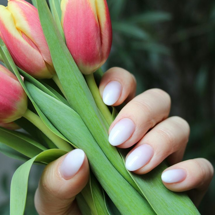 Ombre almond nails