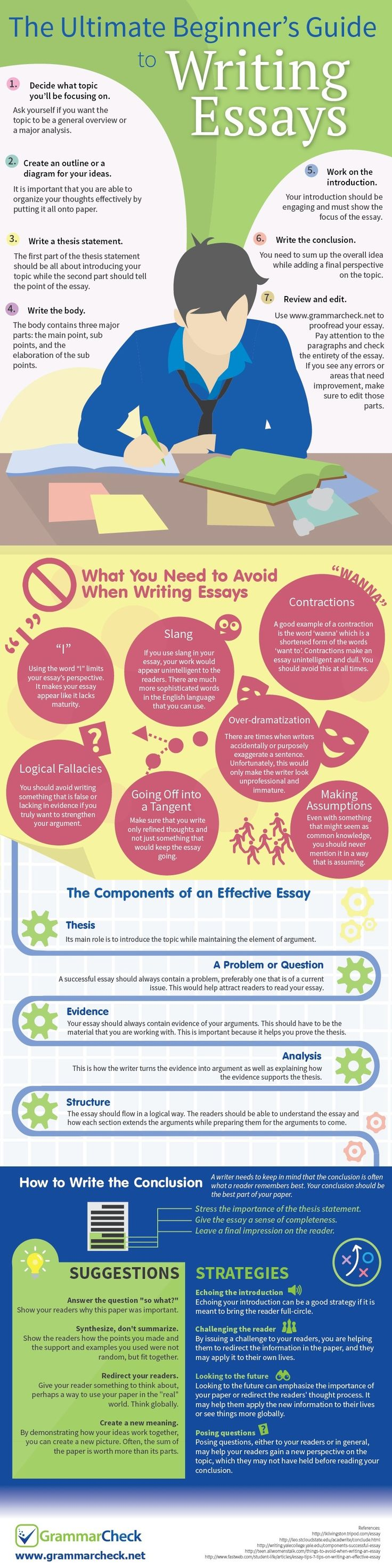 best grammar check infographics images english the ultimate beginner s guide to writing essays infographic