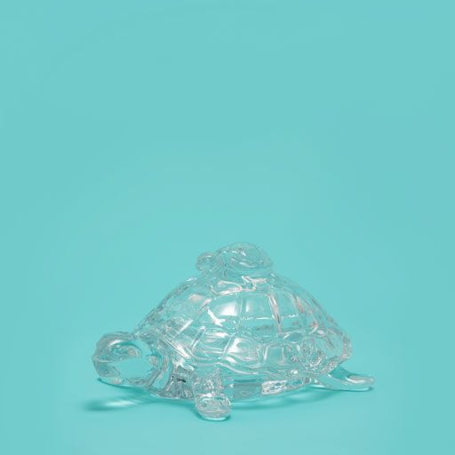 Image of the product Turtle-shaped glass jar