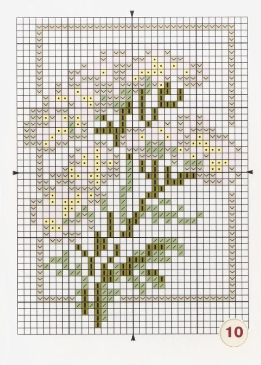 Gallery.ru / Фото #6 - Лекарственные растения Моя вышивка - Mosca