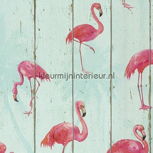Hout in mintkleur met flamingos behang 479706, uit de collectie Barbara Becker V van Rasch, koop je bij kleurmijninterieur