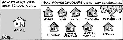homeschool comics
