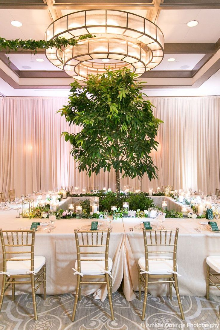 Wedding Reception Details | The Alfond Inn - Winter Park, Florida ..... #weddingphotography #weddingflowers #weddinginspiration #weddingreception #tableinspiration #weddingdecor #weddingseason #weddingphotos #weddingdetails #weddingideas #weddingfashion #rusticwedding  #luxarywedding #destinationweddings #theknot #winterpark #rollinscollege #orlando #visitorlando #visitflorida #florida #hotel @thealfondinn @visitorlando @visitflorida