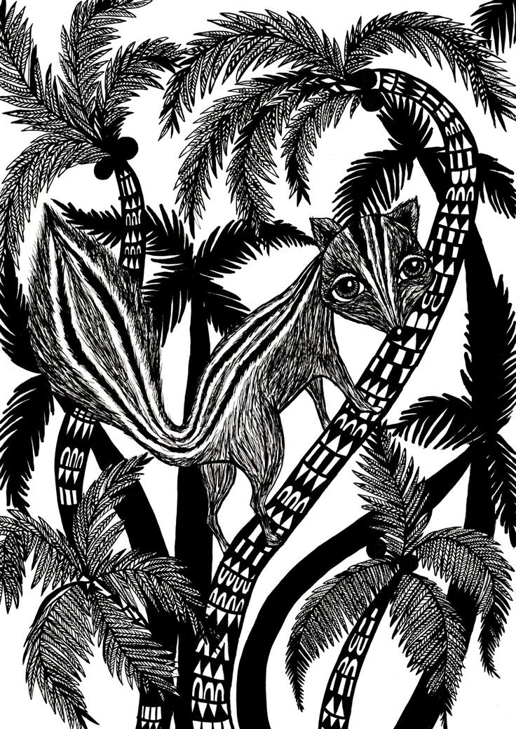 """Sri Lankan squirrel"" illustrated by jojo alderson."