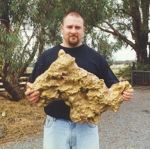 Gold Nugget Found In Backyard lyndan orvis (lyndano) on pinterest