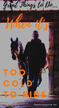 Too cold to ride, winter activities, ground work, in the tackroom, northern horsemanship...