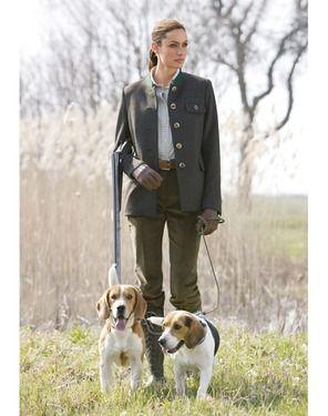 beagle & hunting