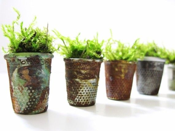 Vintage Thimble Planters with Live Moss