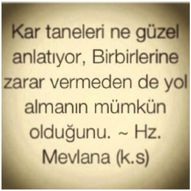 .@arslanbeyza | #mevlana | Webstagram - the best Instagram viewer