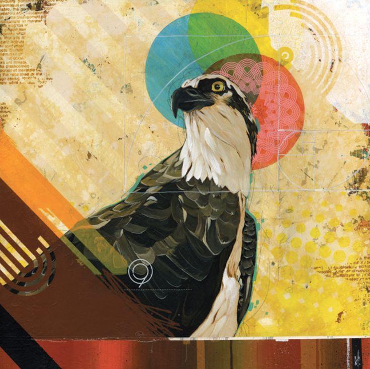 Blane Fontana - eagle