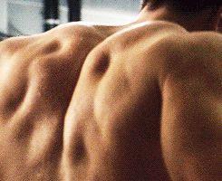 Chris Evan's back muscles!