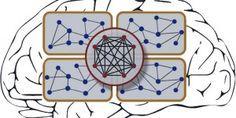 fundamentals of neural network